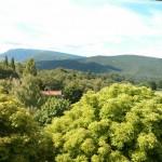 Infos Colo – en direct des séjours Dieulefit – 14 juillet 2014